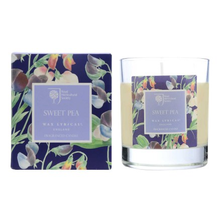 Fragranced Boxed Candle Sweet Pea Doftljus